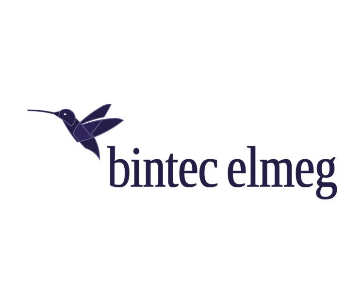 Logo bintec